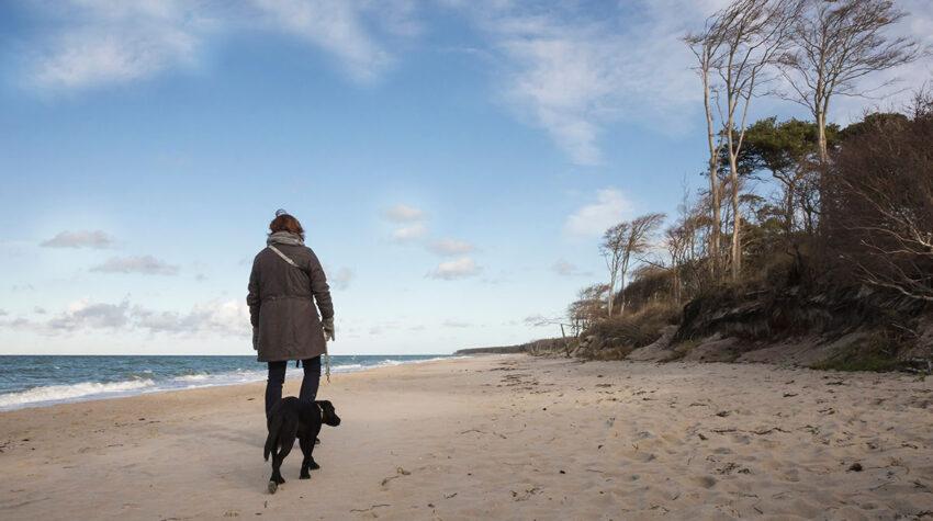 Das Gute an einem Herbsturlaub an der Ostsee: Ihr könnt alle Strände mit eurem Hund besuchen. © Shutterstock, MRo