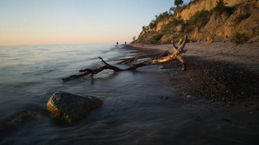 An der Steilküste gibt es auch immer wieder viel Strandgut zu entdecken.