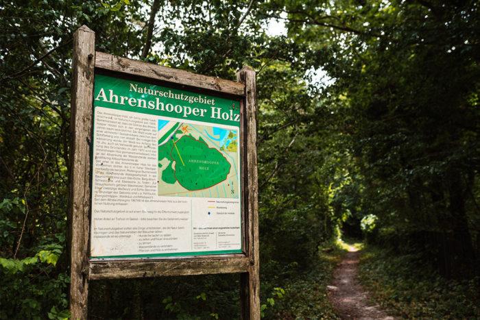 Du gehst gerne Spazieren uns liebst die frische Luft? Wie wäre es dann mit einem erholsamen Waldspaziergang im wunderschönen Ahrenshooper Holz?