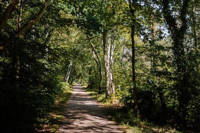 Du suchst Ruhe und Entspannung? Dann wirst du den Nationalpark Vorpommersche Boddenlandschaft lieben. Dieser ist an Friedlichkeit und landschaftlicher Vielfalt kaum zu überbieten.