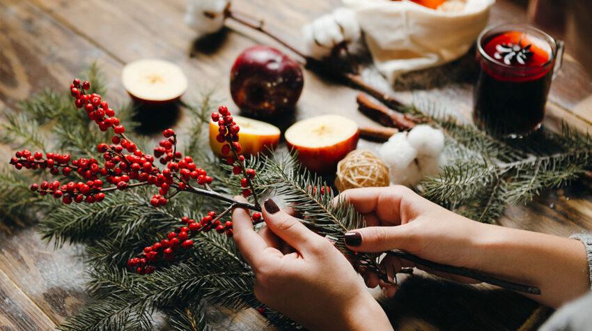 Von Chester-AliveDie leuchtend roten Beeren der Ilexzweige eignen sich besonders gut für einen stimmungsvollen und herrlich weihnachtlichen Adventskranz. © Shutterstock; Chester-Alive