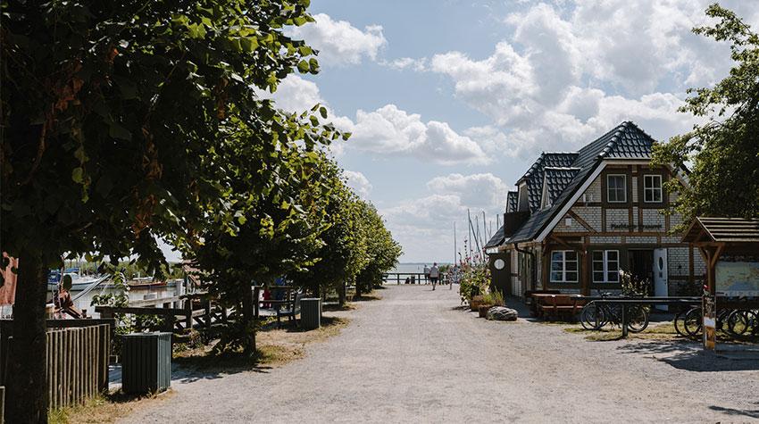 In eurem Ostseeurlaub in Ahrenshoop warten malerische Landschaften und ganz viel Entspannung auf euch.