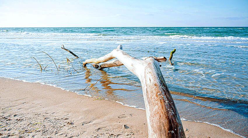 Von der Küsten- bis zur Brandungsströmung: Die Ostsee ist immer in Bewegung.