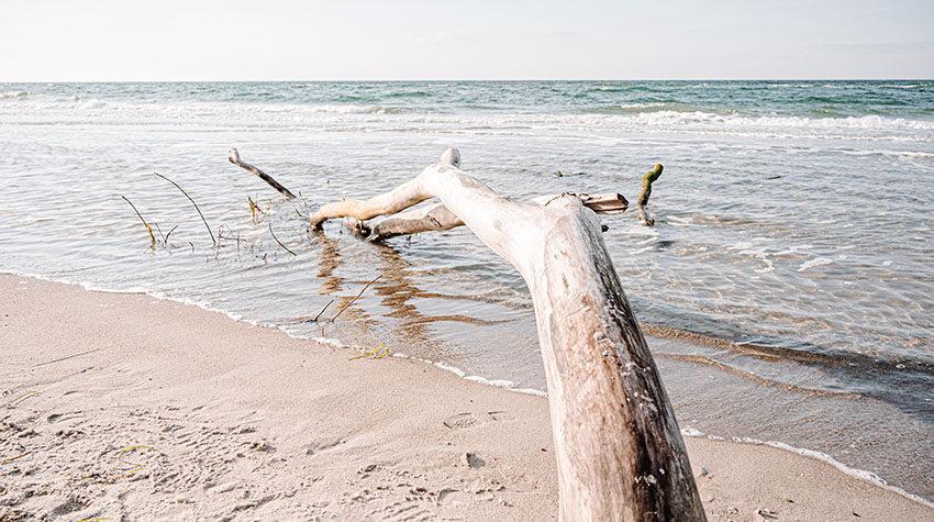 Einmal abtauchen: Ein Bad in der Ostsee ist erfrischend und macht Spaß.