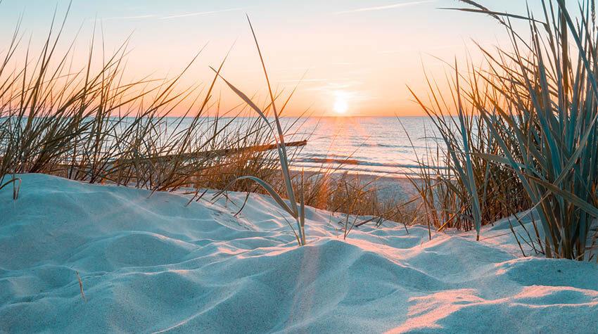 Wir möchten die wunderschöne Natur der Ostsee erhalten.