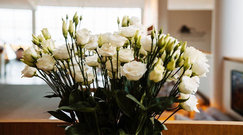 Sag's durch die Blume: Rosen werden zum Valentinstag gerne verschenkt.